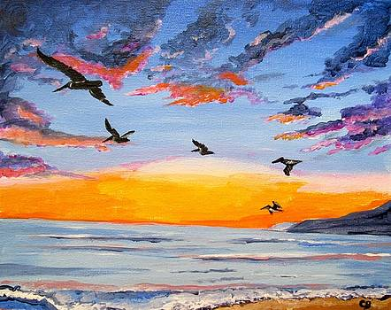 Pelican Sunset by Carol Blackhurst