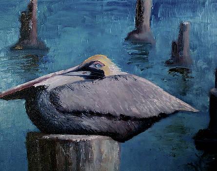 Pelican by Wendie Thompson