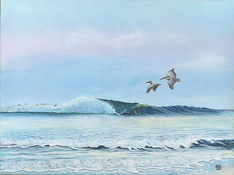 Pelicans in Flight by Anthony Fotia