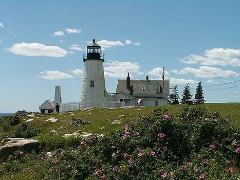 Pemaquid Lighthouse by Theresa Willingham