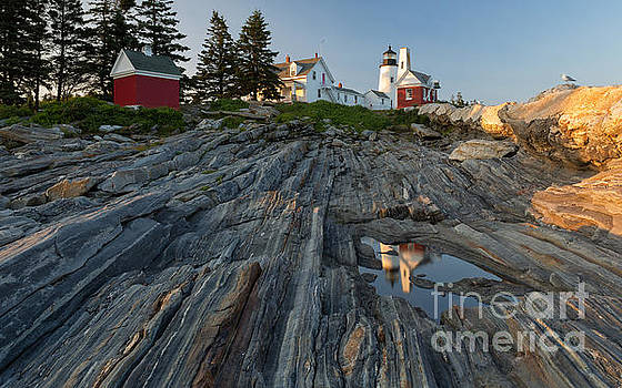 Joshua Clark - Pemaquid Point Light