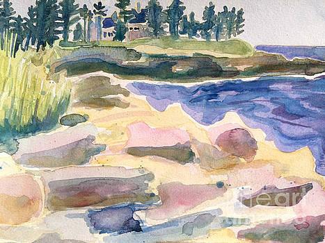 Pemaquid Point Watercolor by Debra Bretton Robinson