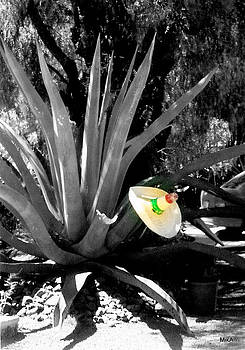 Penca a la Mexicana by MikAn 'sArt