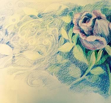 Pencil crayon Rose by Judy Osiowy