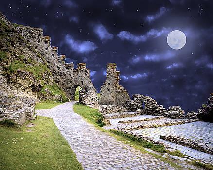Pendragon Moon by Vicki Lea Eggen