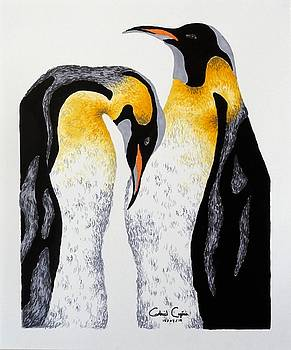 Penguin by Gabriel Cajina