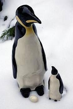 Penguin by Gordon Sage
