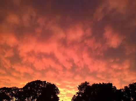 Pennsylvania Burning Sky by Tim Stringer