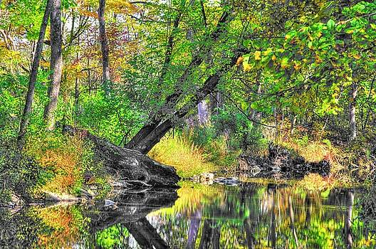 Pennsylvania Country Roads - Autumn Colorfest in the Creek No. 8 - Shade Creek Huntingdon County by Michael Mazaika
