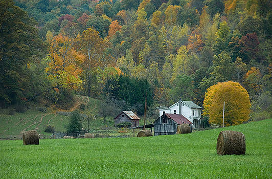 Pennsylvania farm by Tony  Bazidlo