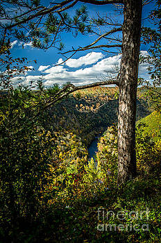 Pennsylvania Grand Canyon At Pine Creek Gorge #1 by Eric Geschwindner