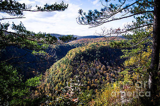 Pennsylvania Grand Canyon At Pine Creek Gorge #2 by Eric Geschwindner