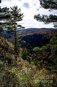 Pennsylvania Grand Canyon At Pine Creek Gorge #3 by Eric Geschwindner