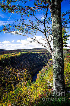 Pennsylvania Grand Canyon At Pine Creek Gorge #4 by Eric Geschwindner