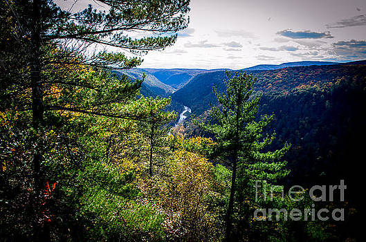 Pennsylvania Grand Canyon At Pine Creek Gorge #5 by Eric Geschwindner