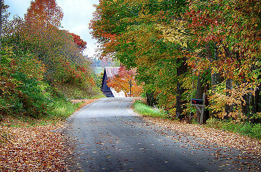 Penny Lane Vermont fall colors by Jeff Folger