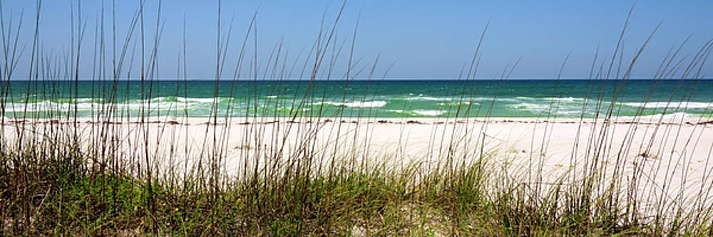 Brian Harig - Pensacola Beach 1 Panorama - Pensacola Florida