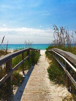 Pensacola Florida B52516 by Mas Art Studio