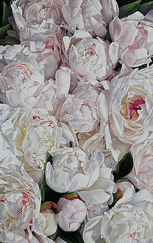 Peonies 3' x 2' by Thomas Darnell