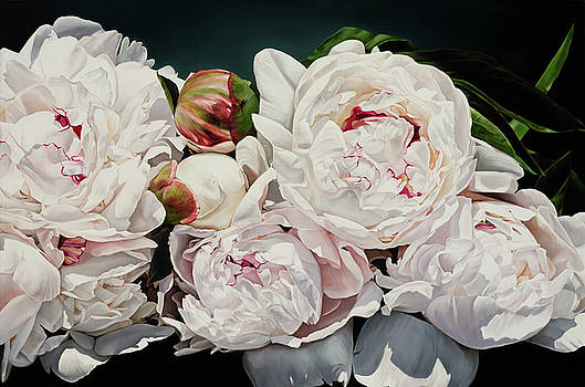 Peonies 90 X 137 by Thomas Darnell
