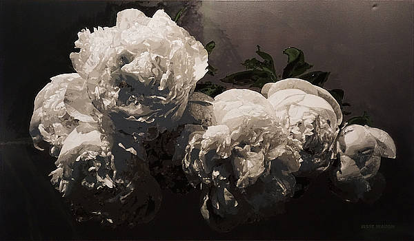 Peonies Baroque by Jesse Waugh