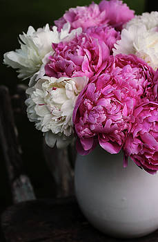 Peonies by Kelly Lucero