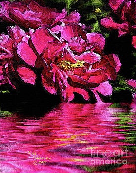 Peonies Pools by Kat Solinsky