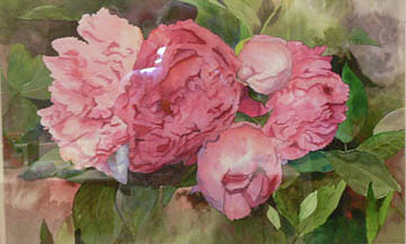 Peonies by Sandy Reese