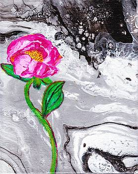 Peony by Stormy Miller