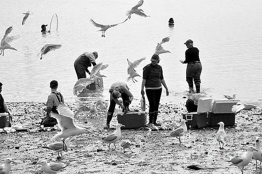People and Birds Against Fish  2 by Tanya Searcy