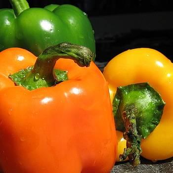 Pepper by Krista Barth