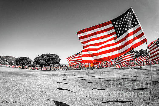 Julian Starks - Pepperdine 911 Flag Salute