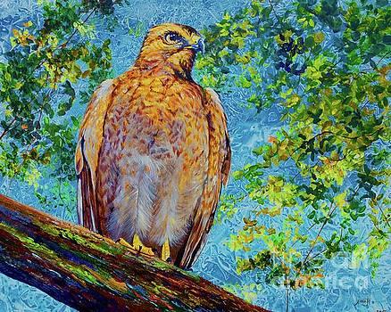 Perched Hawk by AnnaJo Vahle