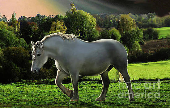 Percheron Horse 2 by Christian Simonian