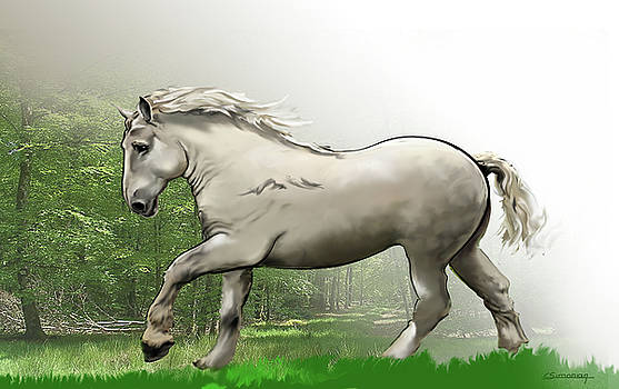 Percheron horse by Christian Simonian