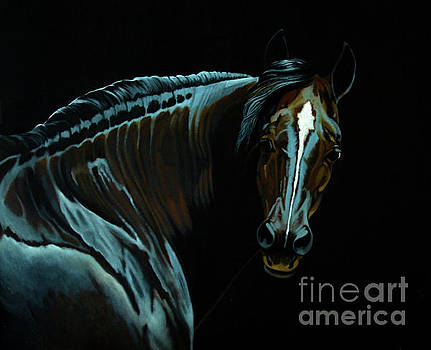 Percheron Mare in the MoonLight by Cheryl Poland