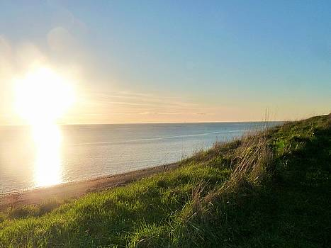 Perfect Light at Ebey's Landing by Ann Michelle Swadener