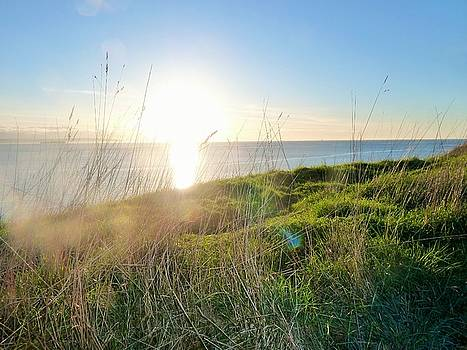 Perfect Light at Ebey's Landing II by Ann Michelle Swadener