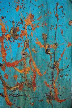 Perfoliate by Josh Stuller