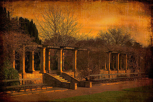Pergola in the park by Martin Fry