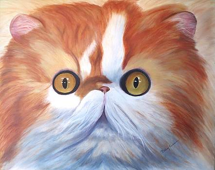 Persian Cat by Betsy Cullen