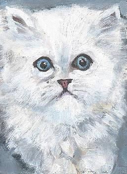 Persian Kitty by Jessmyne Stephenson