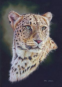 Persian Leopard portrait by Eric Wilson