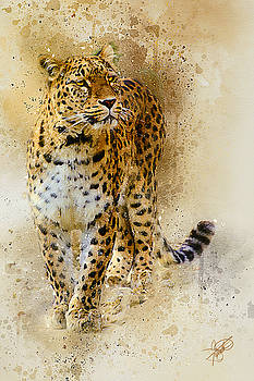 Persian Leopard by Tom Schmidt