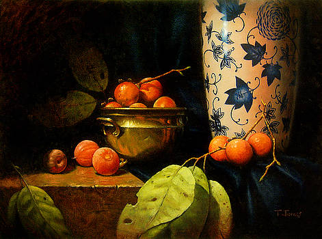 Persimmons by Timothy Jones