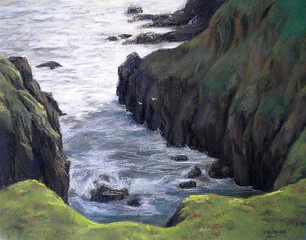 Pescadero Bluffs by Cheri Halsema