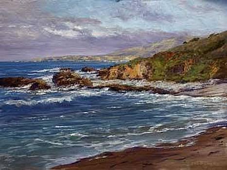 Pescadero Cove by Donald Neff