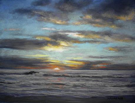 Pescadero Sunset by Cheri Halsema