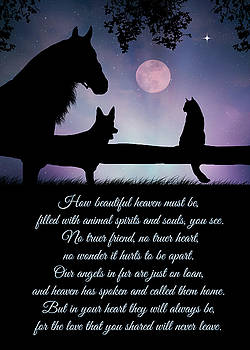 Pet Sympathy Heaven Memorial Poem for Bereavement  by Stephanie Laird