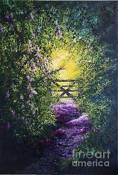 Petal strewn pathway, into the light by Lizzy Forrester